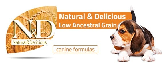 nd-low-ancestral-grain-