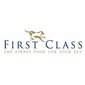 First Class Dog